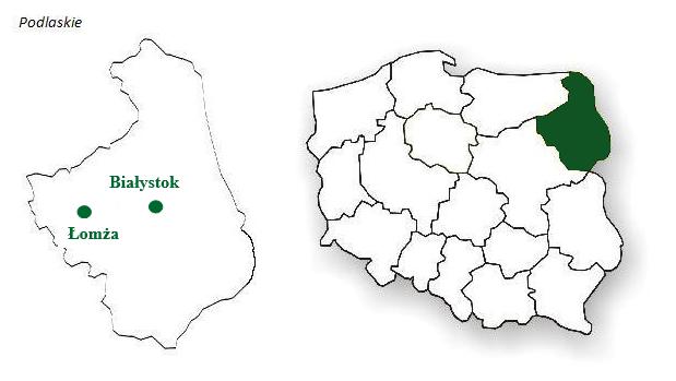 Leasingi i kredyty Białystok